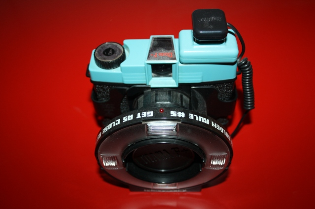 Diana F ring flash