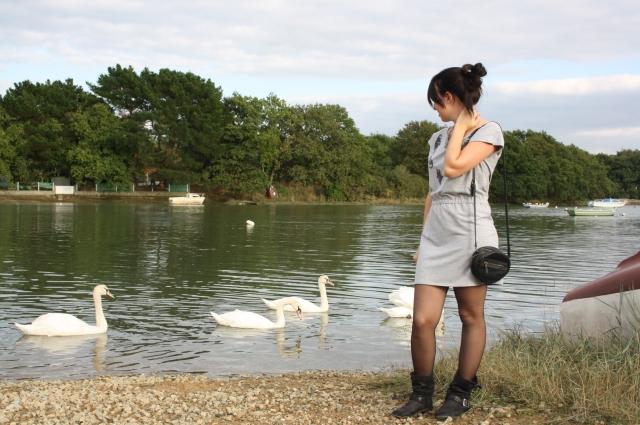 Bleupaillette-swan2