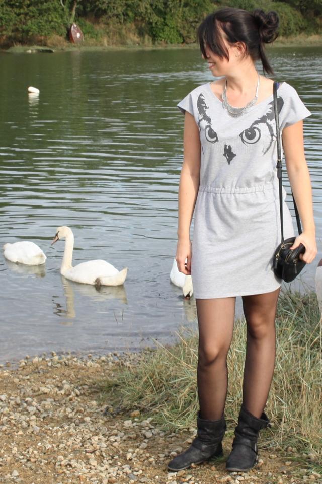 Bleupaillette-swan4