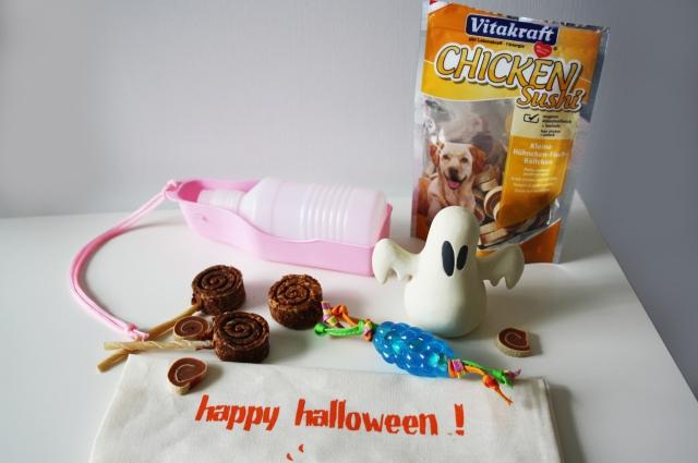 doggybox d'halloween blog animaux yorkshire chien avis